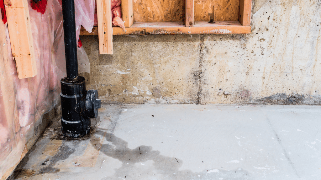 basement with water stains