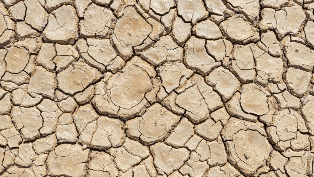 cracks in the dry soil