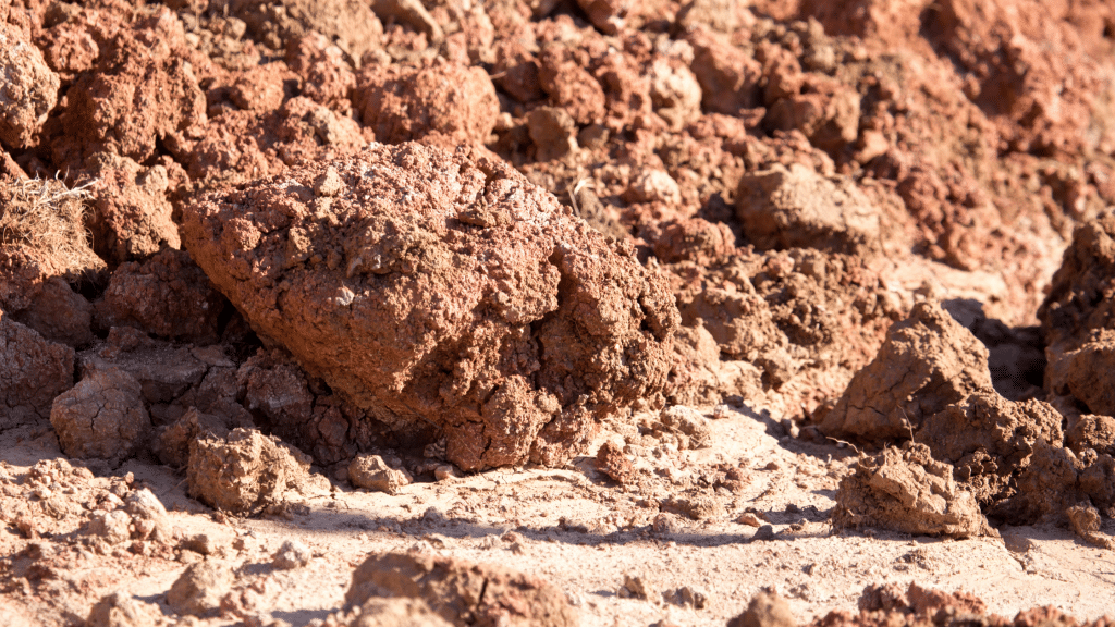 expansive soil with clay