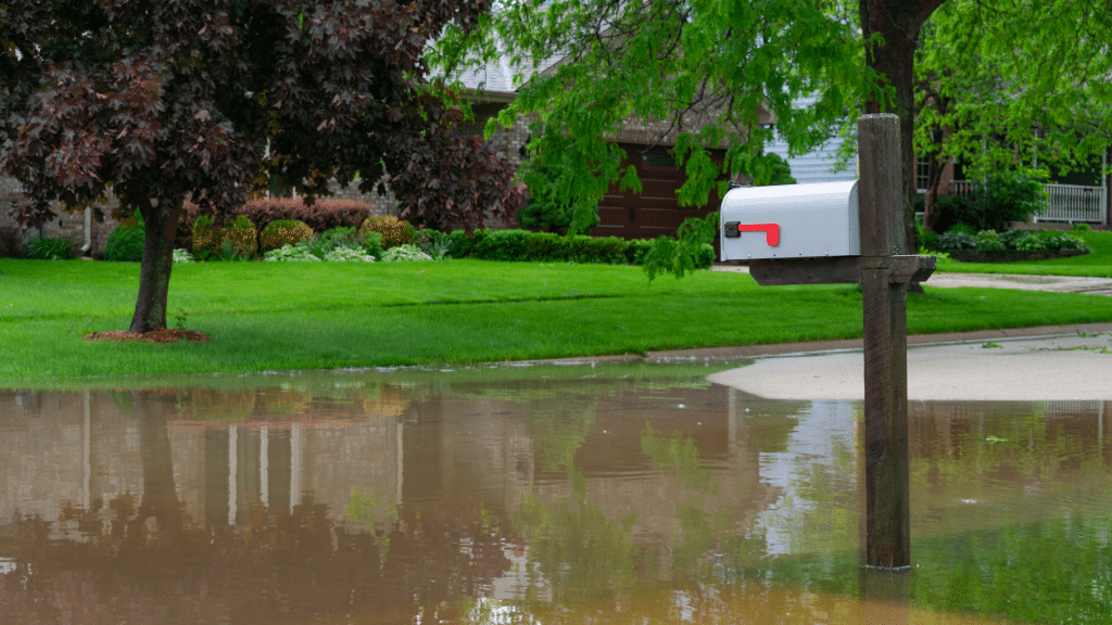 flood on the street