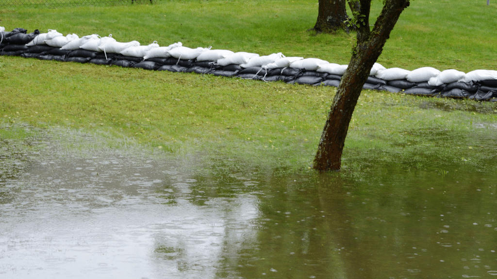 lawn flooded with water