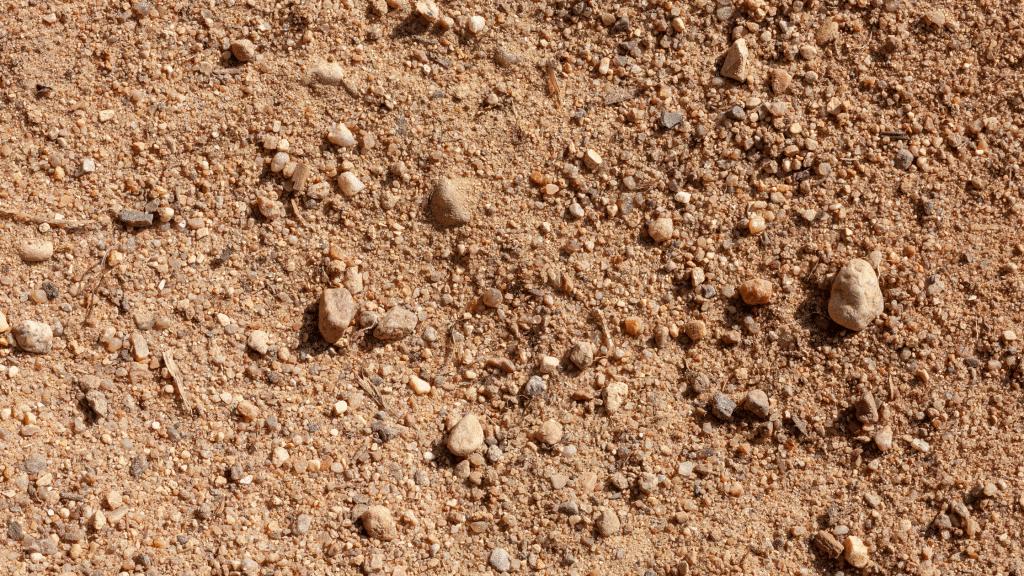 sandy soil in Yorktown