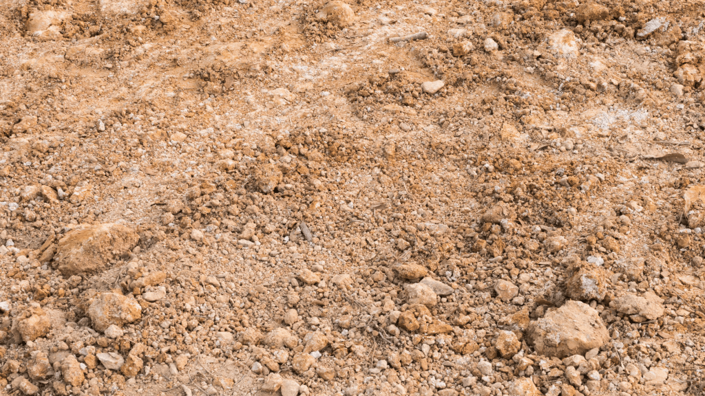 soil with a high accumulation of clay