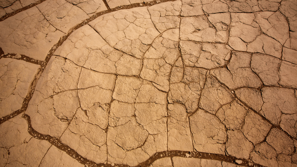 soil with a high concentration of clay