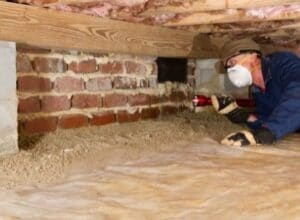 Crawl space under the house