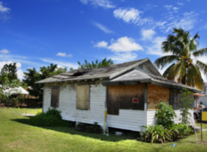 Condemned, Mold Damaged House